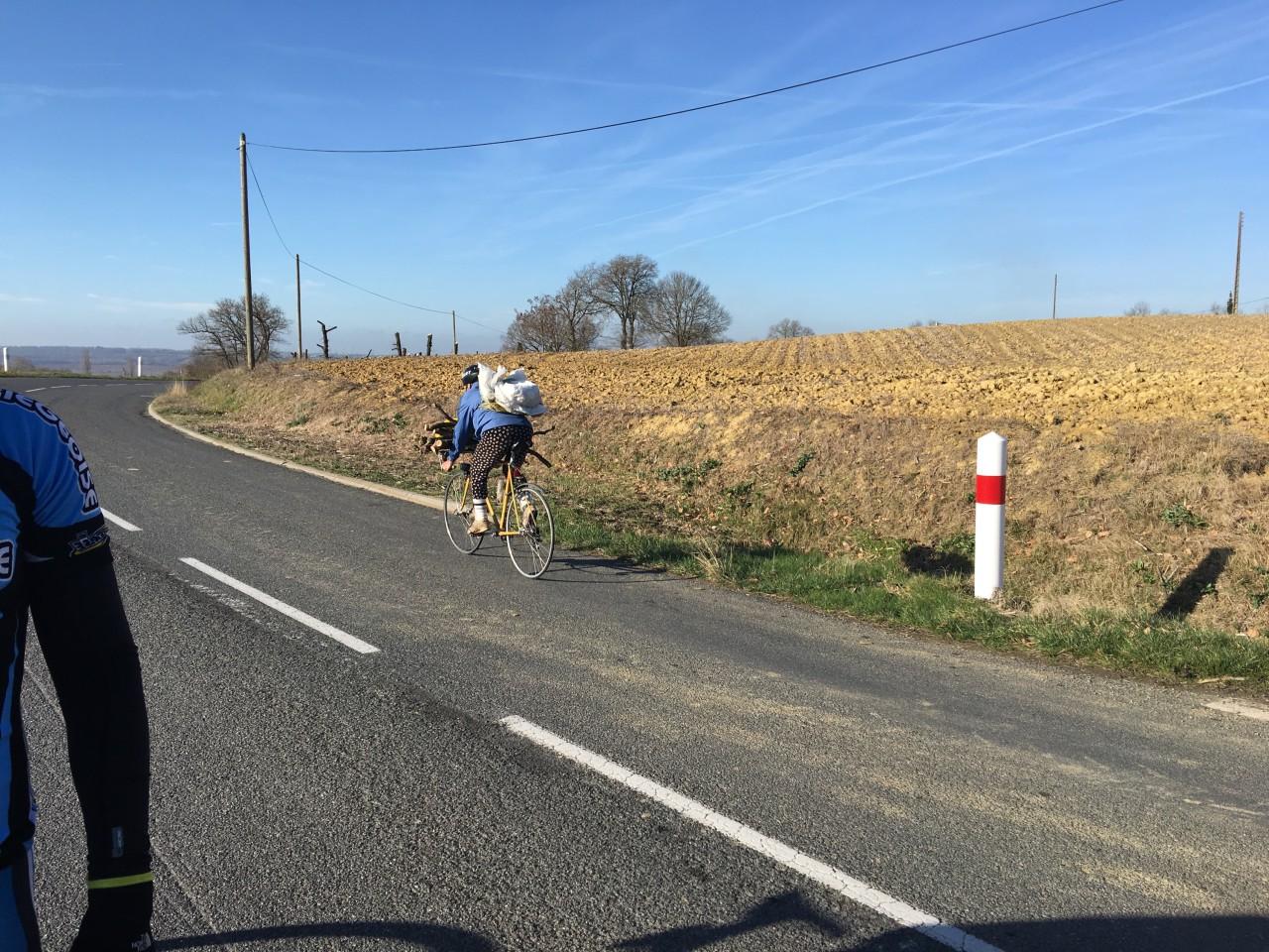 transport de bois vélo