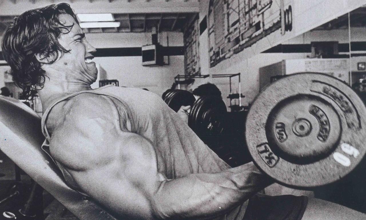 arnold biceps