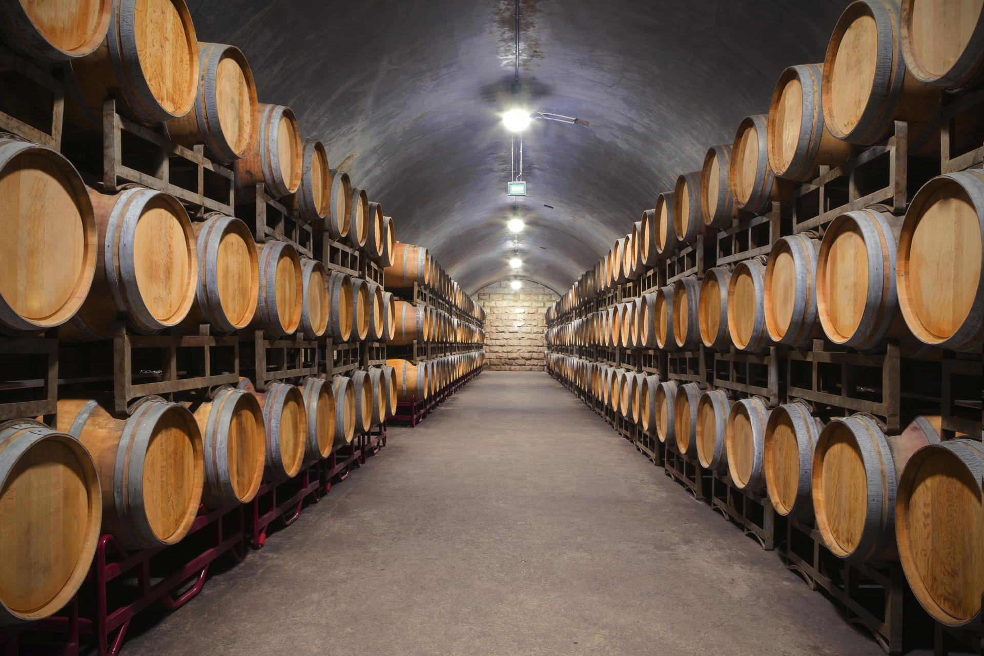 100 Incroyable Concepts A Quelle Temperature Conserver Le Vin
