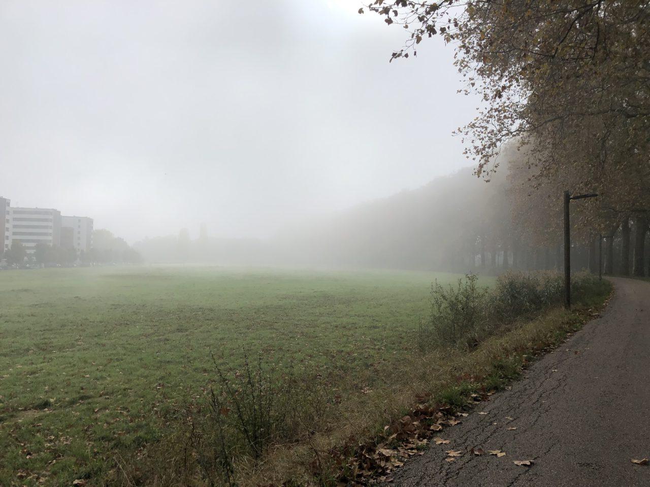 piste cyclable brouillard