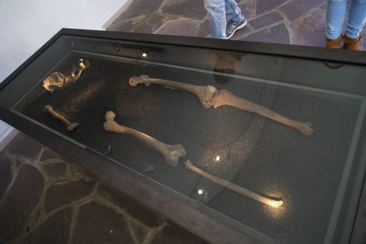 squelette viking