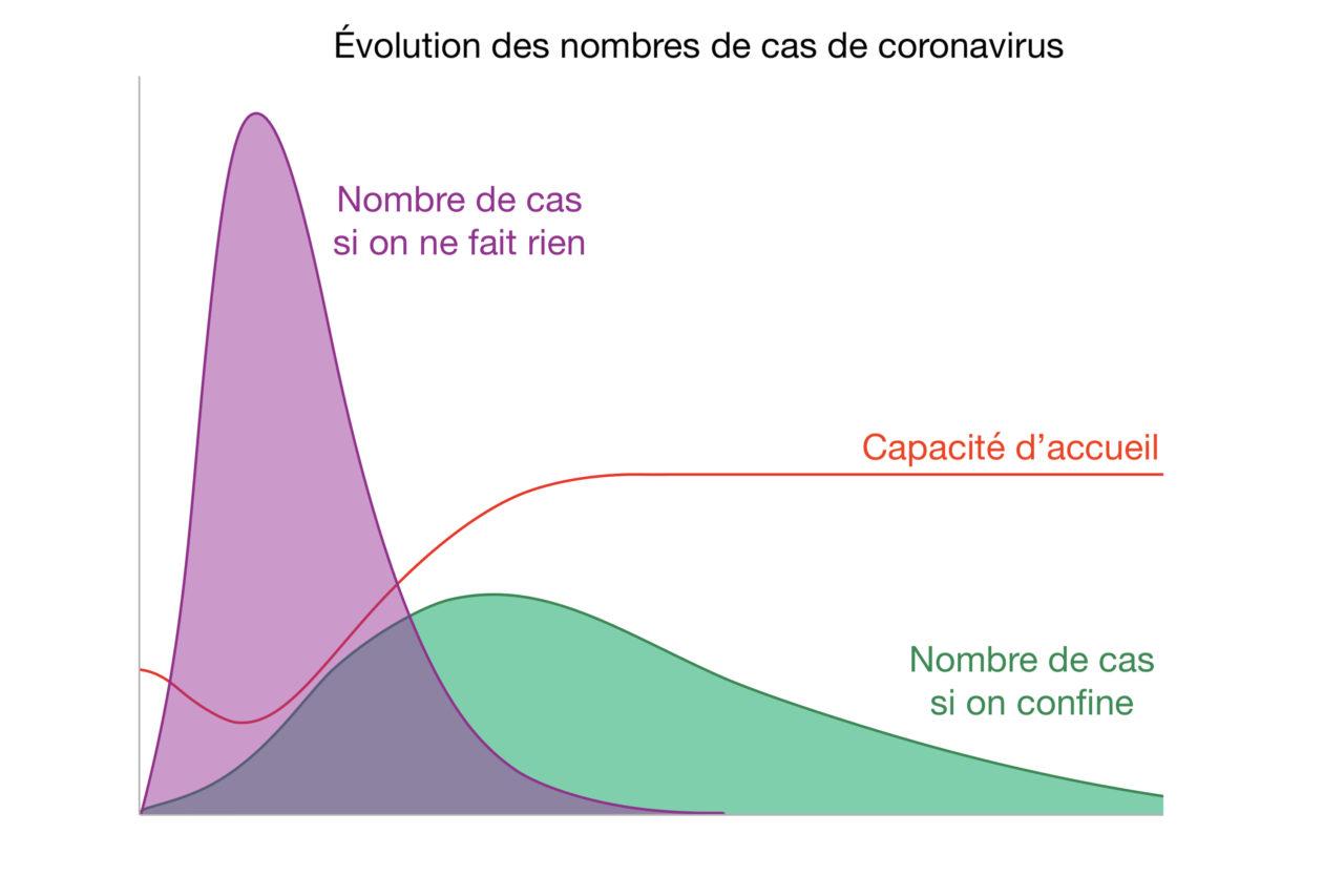 courbes coronavirus